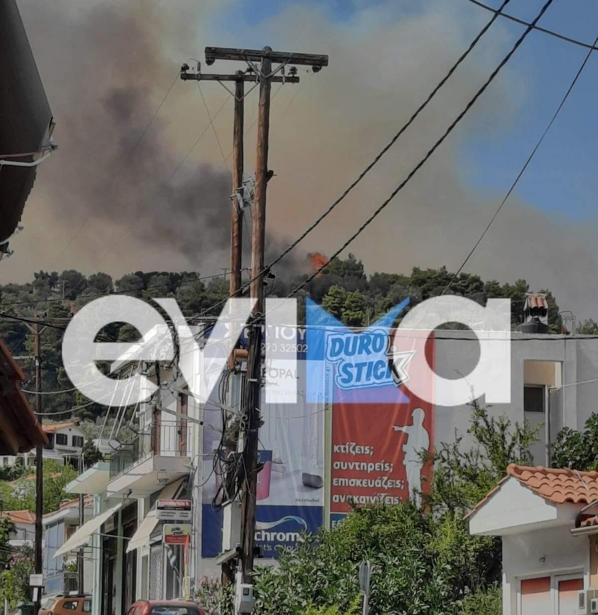 Υπό έλεγχο η φωτιά στην Εύβοια