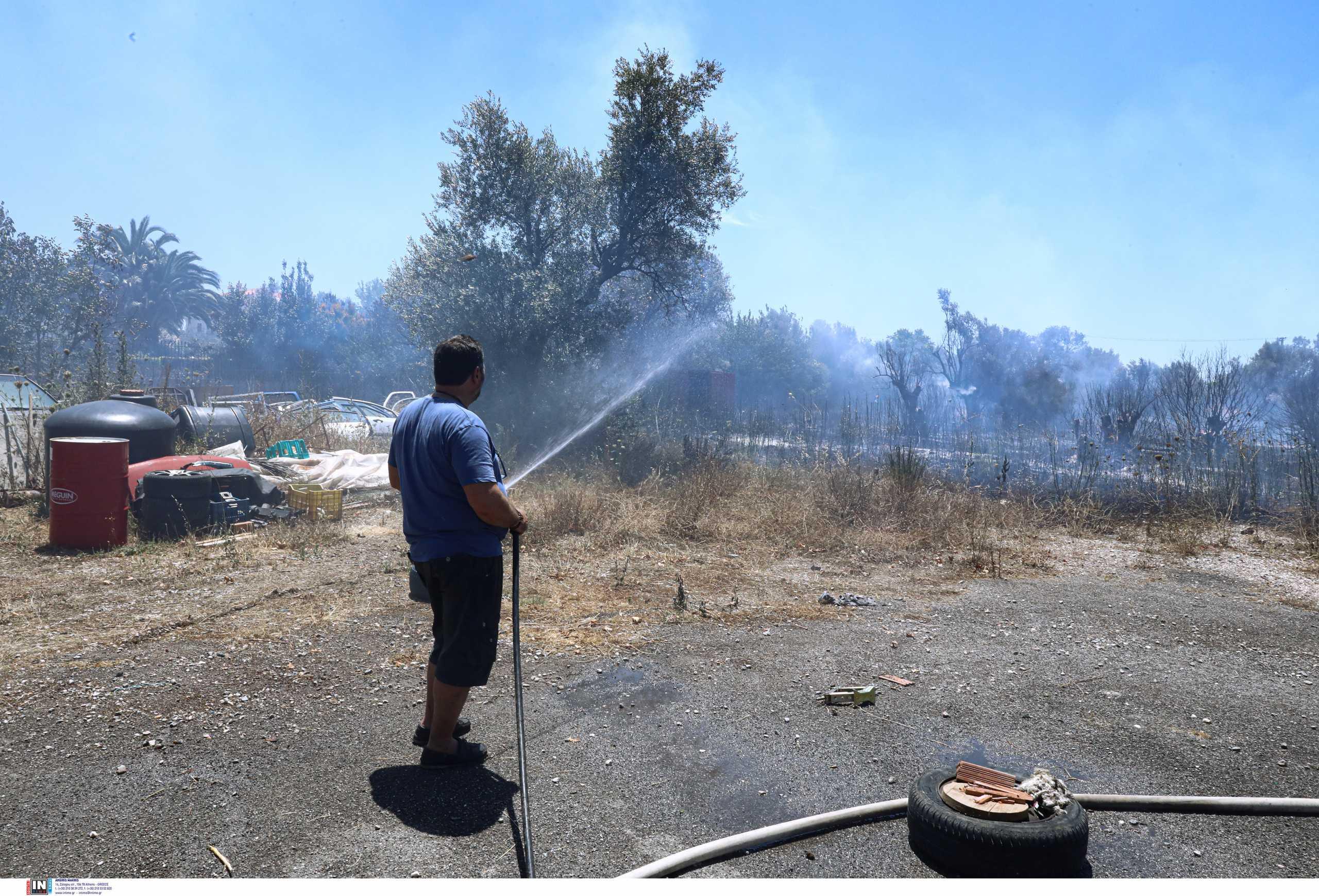 Φωτιά στην Παλλήνη – Ισχυρές δυνάμεις της πυροσβεστικής