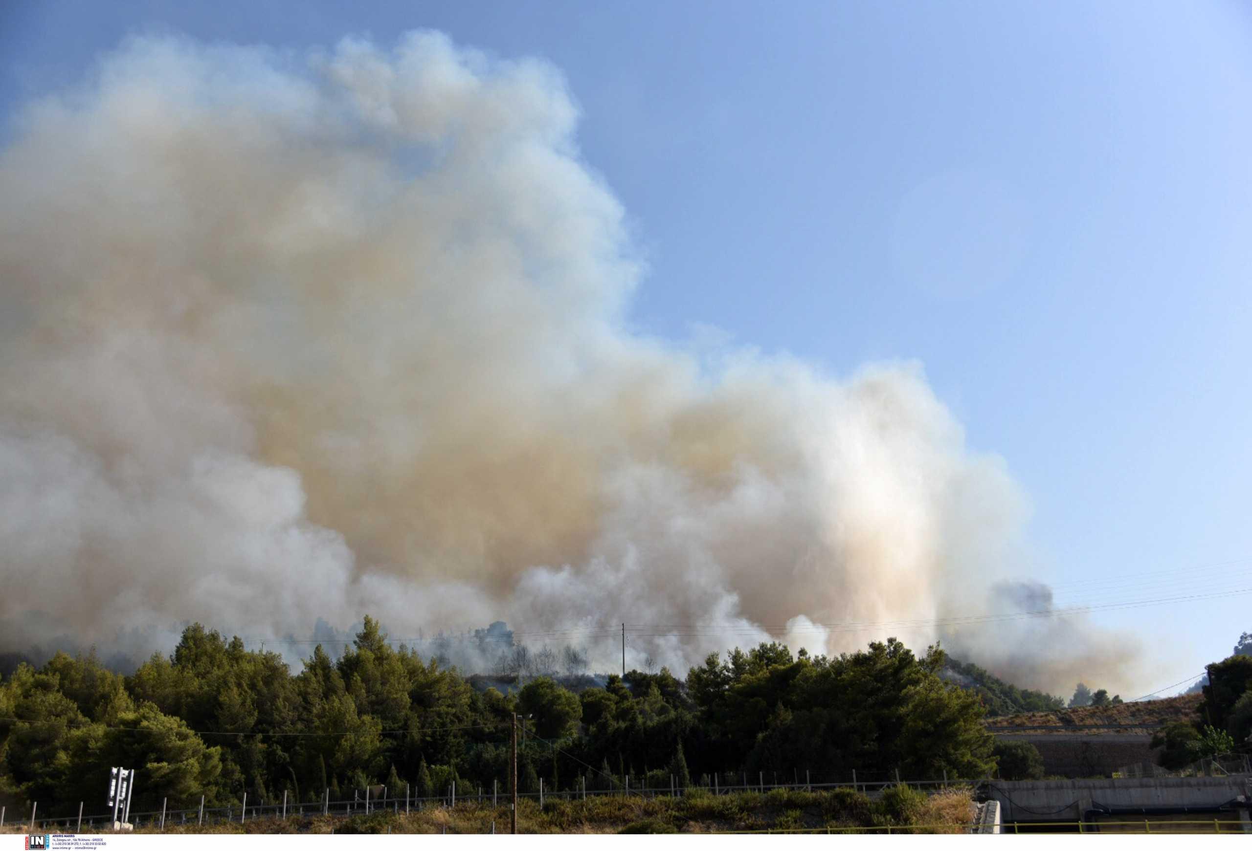 Φωτιές – Καιρός: Πώς θα είναι οι άνεμοι τις επόμενες ώρες