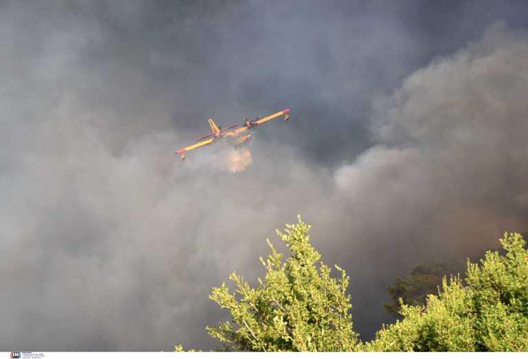 Φωτιά στο Κιλκίς: Ισχυρές δυνάμεις της πυροσβεστικής στο σημείο