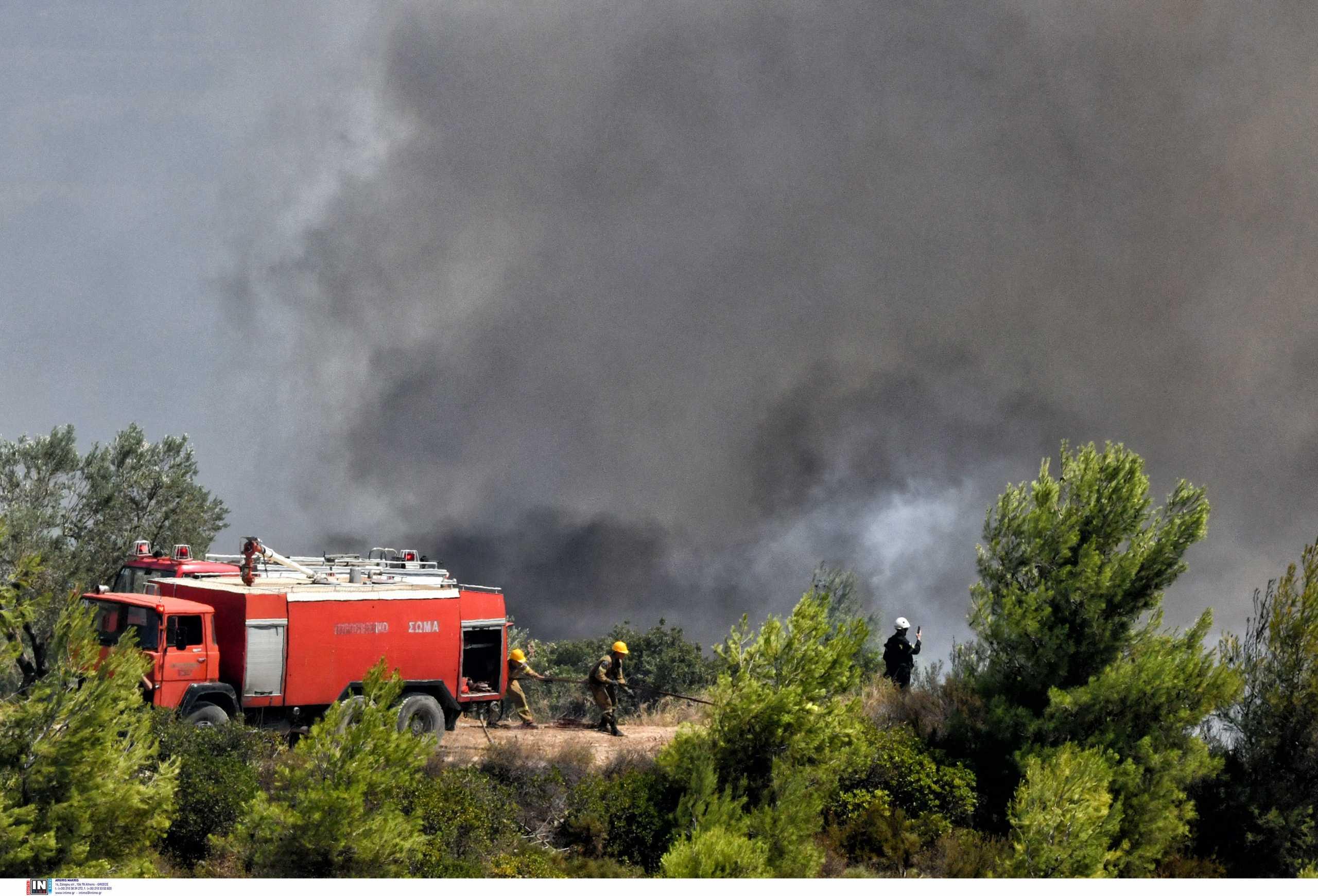 Φωτιές στη Μακεδονία: Καλύτερη η εικόνα στα πέντε μέτωπα