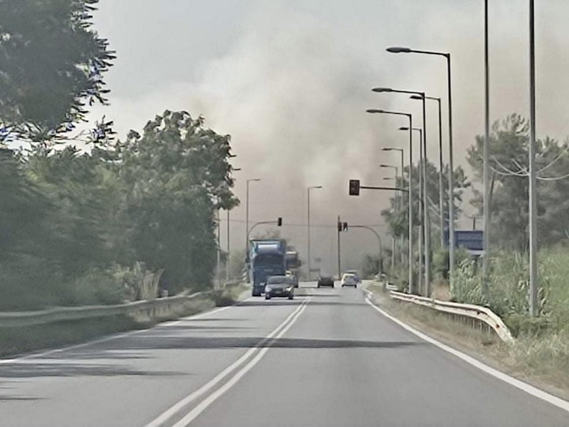 Φωτιά στην εθνική οδό Λαρίσης – Τρικάλων κοντά στα ΤΕΙ