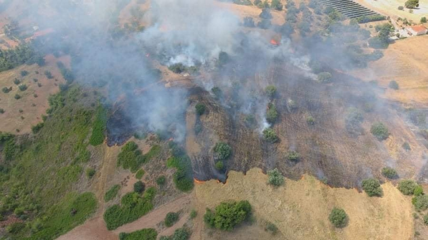 Υπό έλεγχο η φωτιά στον Ωρωπό – Δεν απείλησε σπίτια