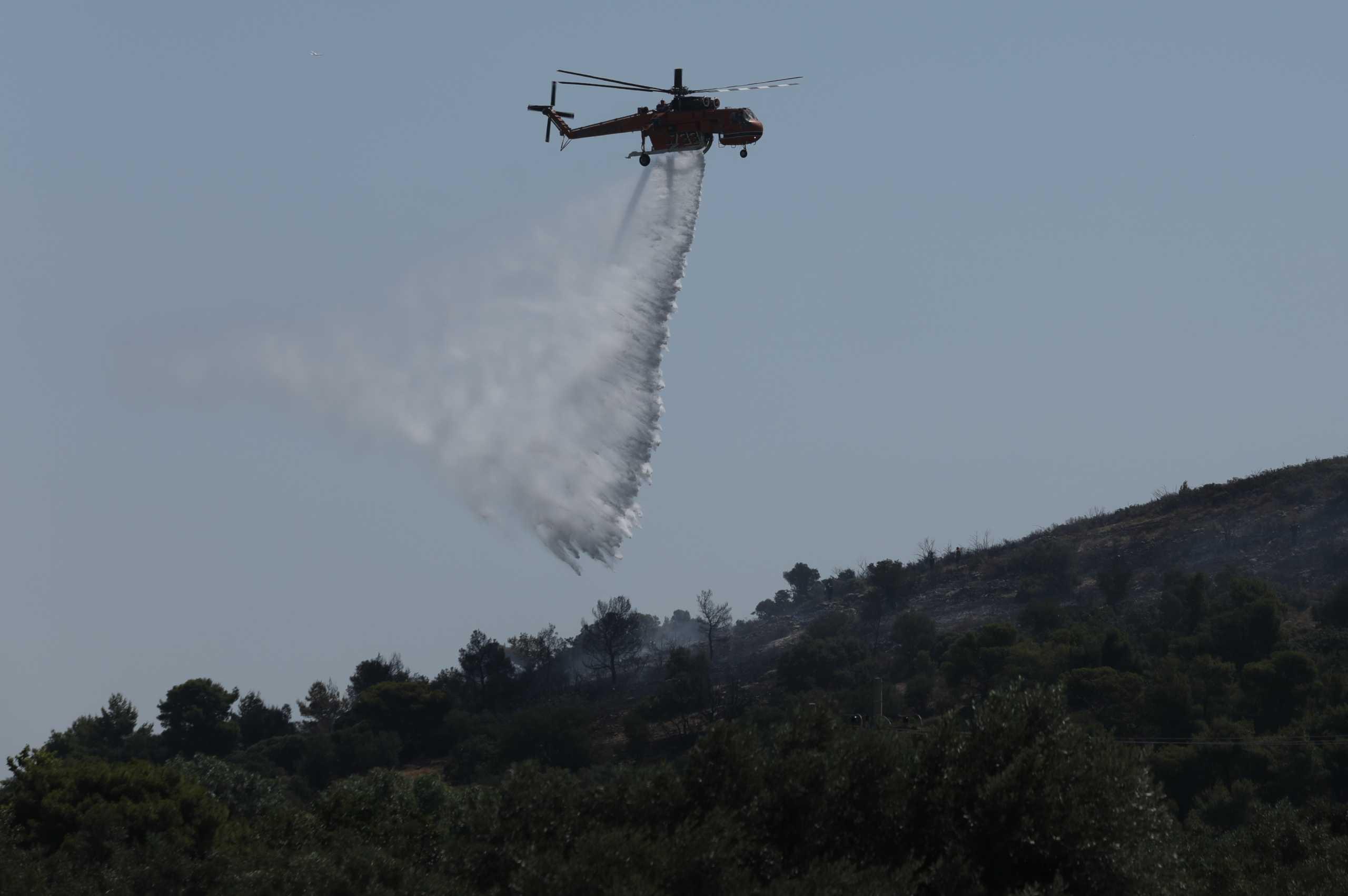 Ηράκλειο: Φωτιά στην Άνω Μούλια – Επιχείρηση της πυροσβεστικής από έδαφος και αέρα