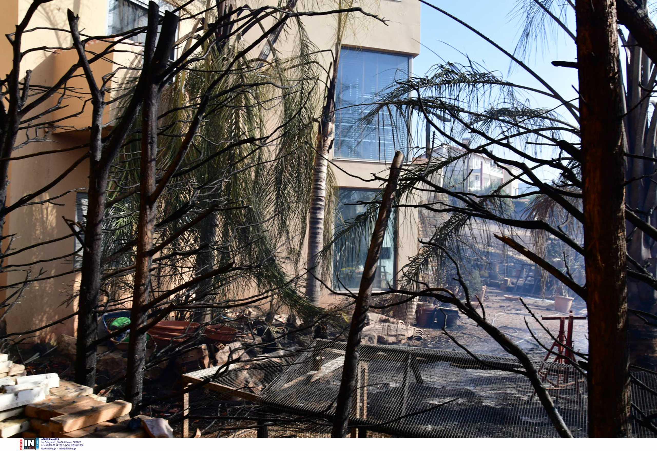 Φωτιές σε Πάτρα και Δροσιά: Μαρτυρίες κατοικών για εμπρησμό