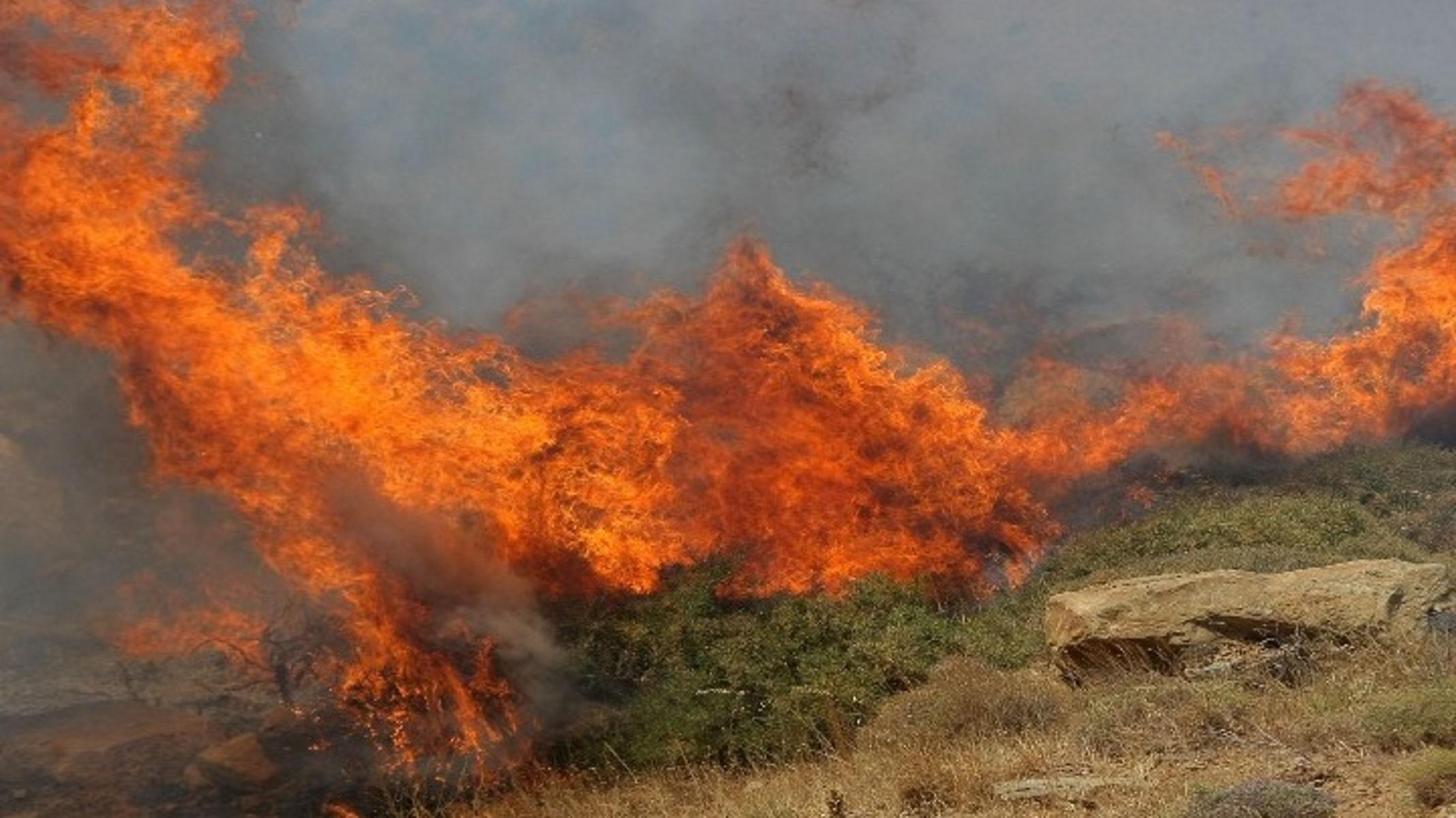 Φωτιά σε Διαβατά και Βαθύλακκο Θεσσαλονίκης – «Σύμμαχος» ο αέρας και η ζέστη