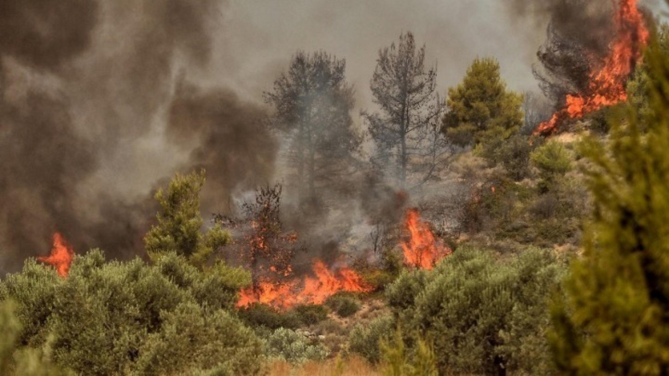 Σε πύρινο κλοιό η Κύπρος: Φωτιές σε Λεμεσό, Λάρνακα και Λευκωσία