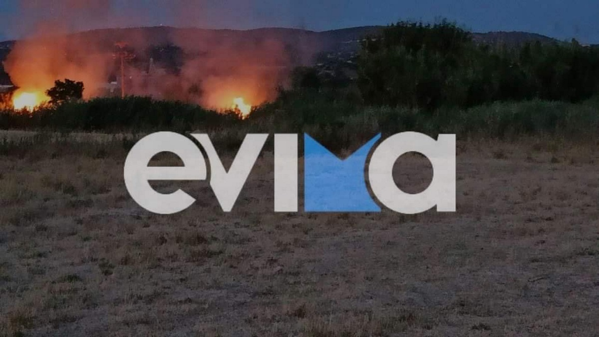 Φωτιά στο Αλιβέρι: Αντιμέτωπη με δύο μέτωπα η Πυροσβεστική