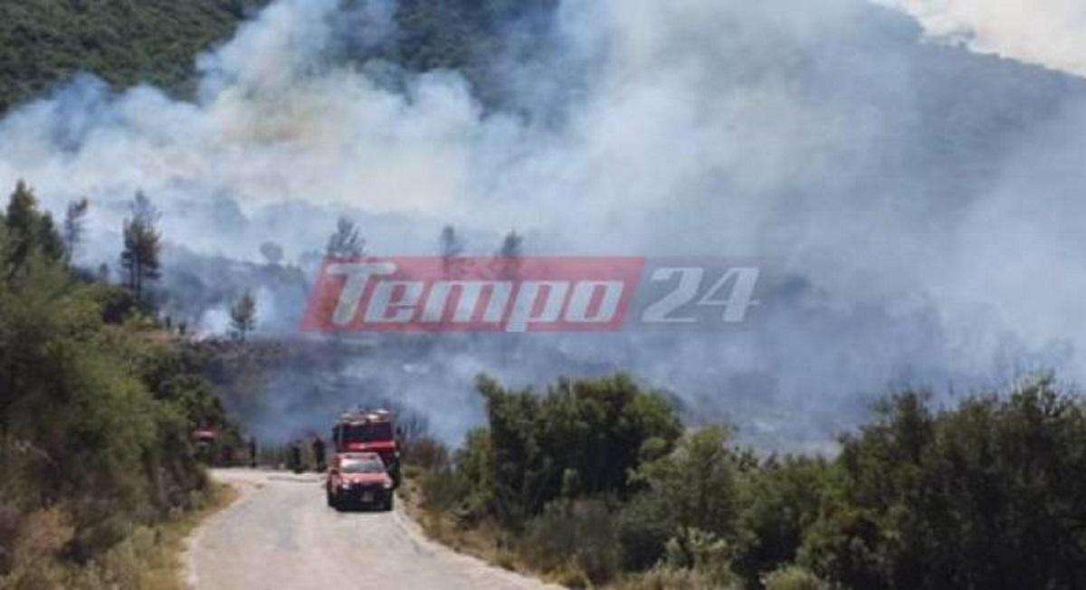 Φωτιά στην Αχαΐα: Εκκενώθηκαν Δροσιά και Σκιαδά – Δραματική έκκληση: Καιγόμαστε