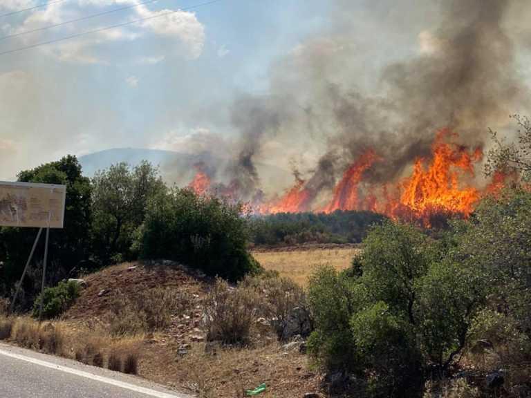 Σε ύφεση η φωτιά στη Χαλκίδα - Καλύτερη η κατάσταση στο Ναύπλιο