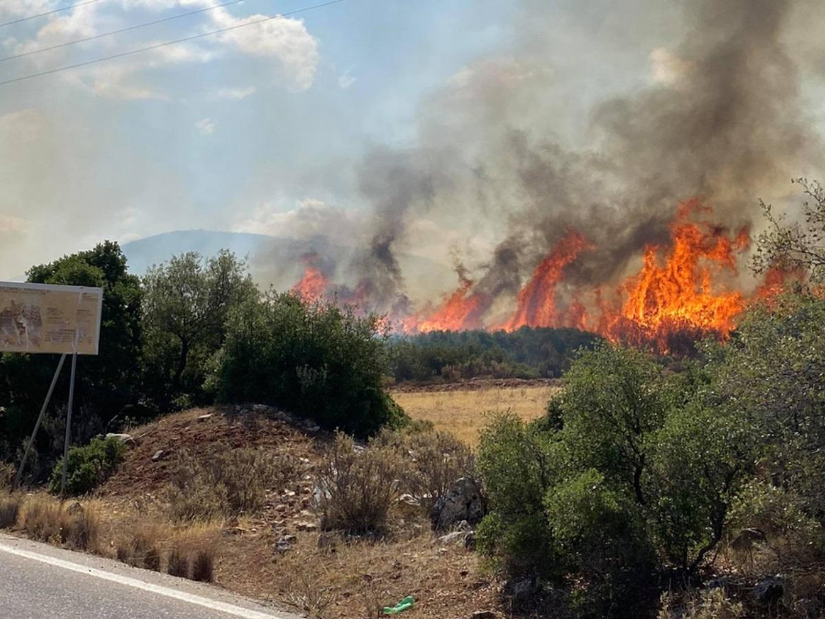 Φωτιά στο Κιλκίς: Ολονύχτια μάχη με τις φλόγες