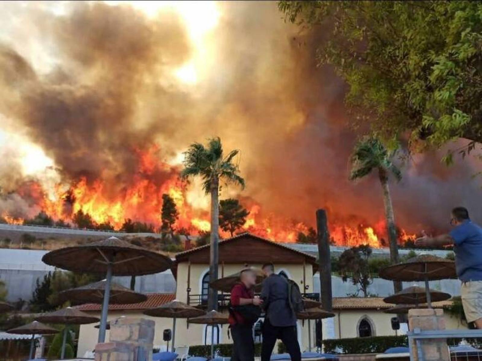 Φωτιά στην Αχαΐα: Δύσκολη μάχη με τις φλόγες – Εκκενώνεται και ο Λόγγος, κάηκαν σπίτια