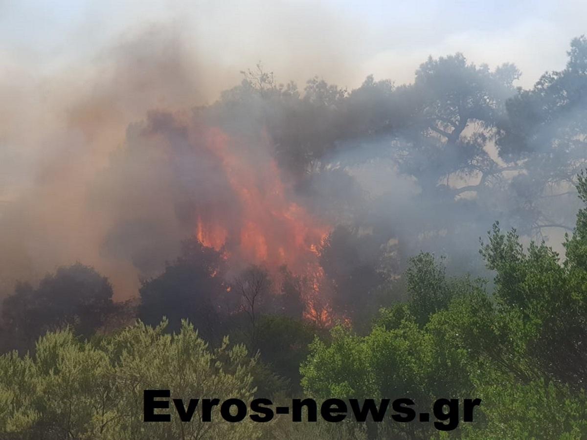 Μεγάλη φωτιά στον Έβρο – Εκκενώνεται περιοχή στο Σουφλί