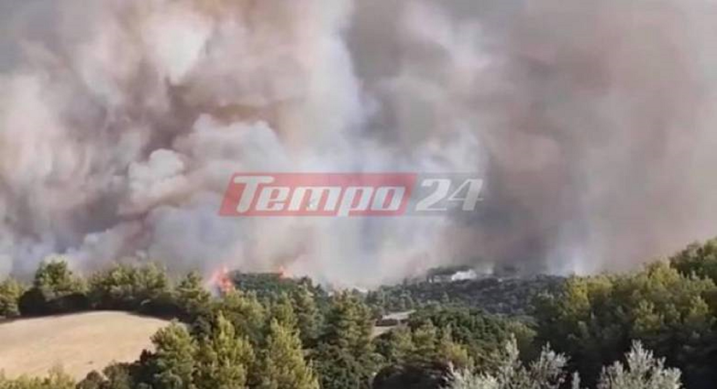Φωτιά στην Αχαΐα: «Θα καούν τα σπίτια μας» – Πύρινη κόλαση και δύσκολο βράδυ σε Δροσιά, Φτέρη και Σκιαδά