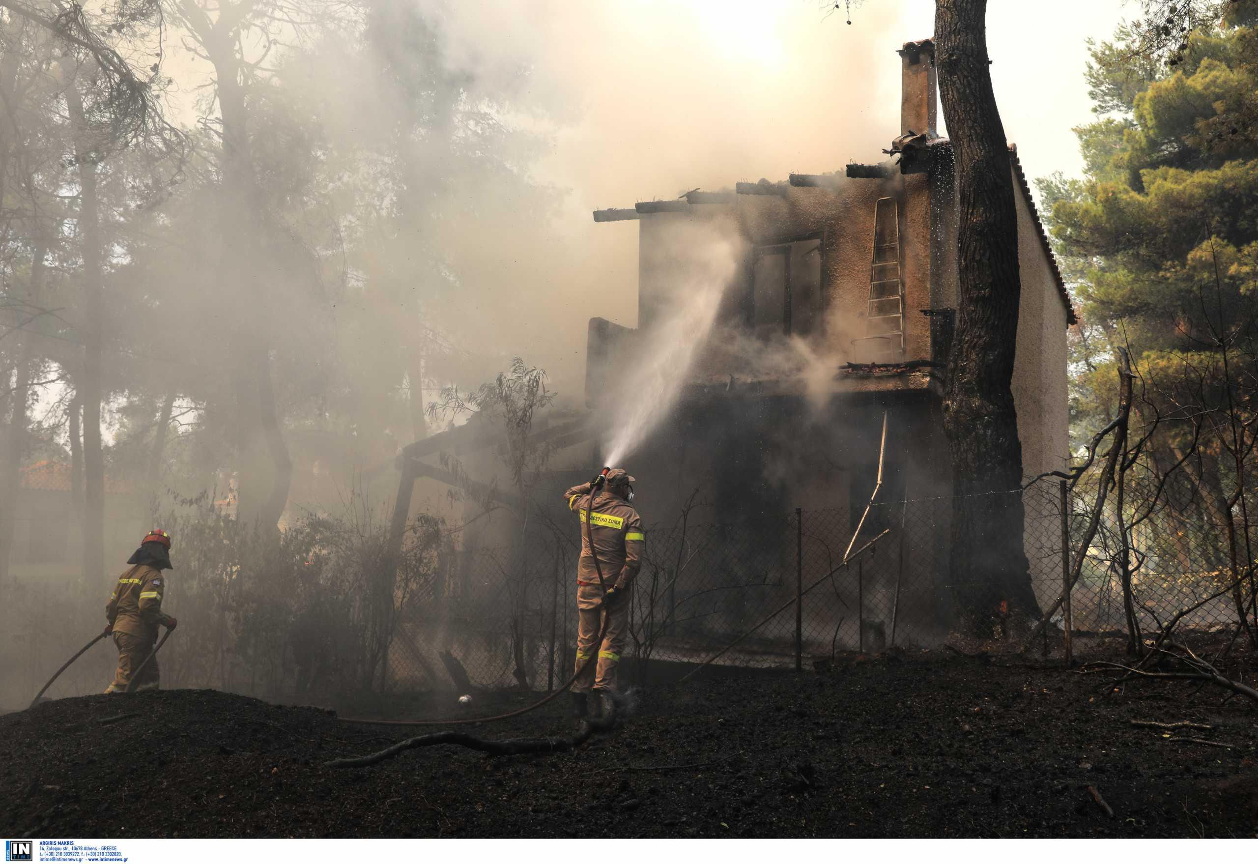 Φωτιά σε Σταμάτα – Διόνυσο: Ξεκίνησε από κάπνισμα μελισσιών; Ποιον αναζητούν οι Αρχές