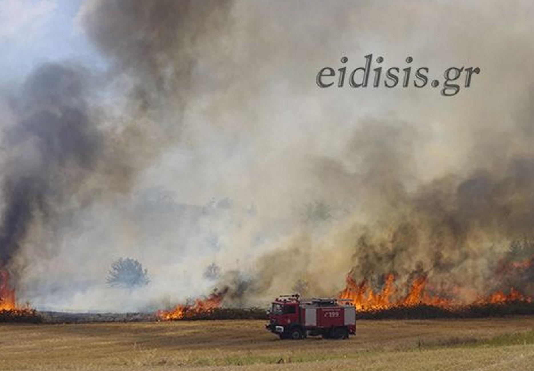 Κιλκίς: Αναστάτωση από φωτιά κοντά στον ΧΥΤΑ – Ένα πυκνό σύννεφο καπνού σκέπασε την πόλη