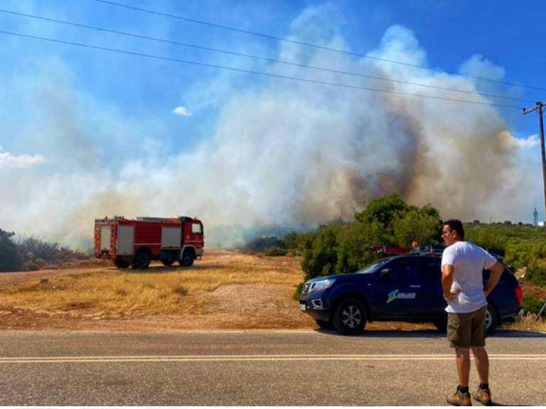 Φωτιά στην Ηλεία κοντά στην Αρχαία Ολυμπία - Εκκενώνεται οικισμός