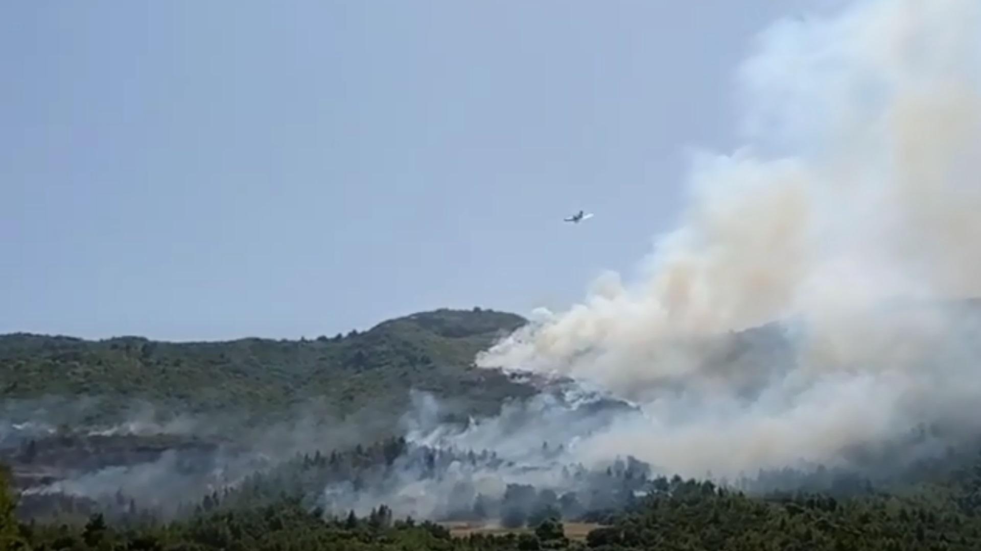 Φωτιά τώρα στην Πάτρα: Εκκενώνεται χωριό – «Οι φλόγες πλησιάζουν τα απομακρυσμένα σπίτια» λέει ο δήμαρχος