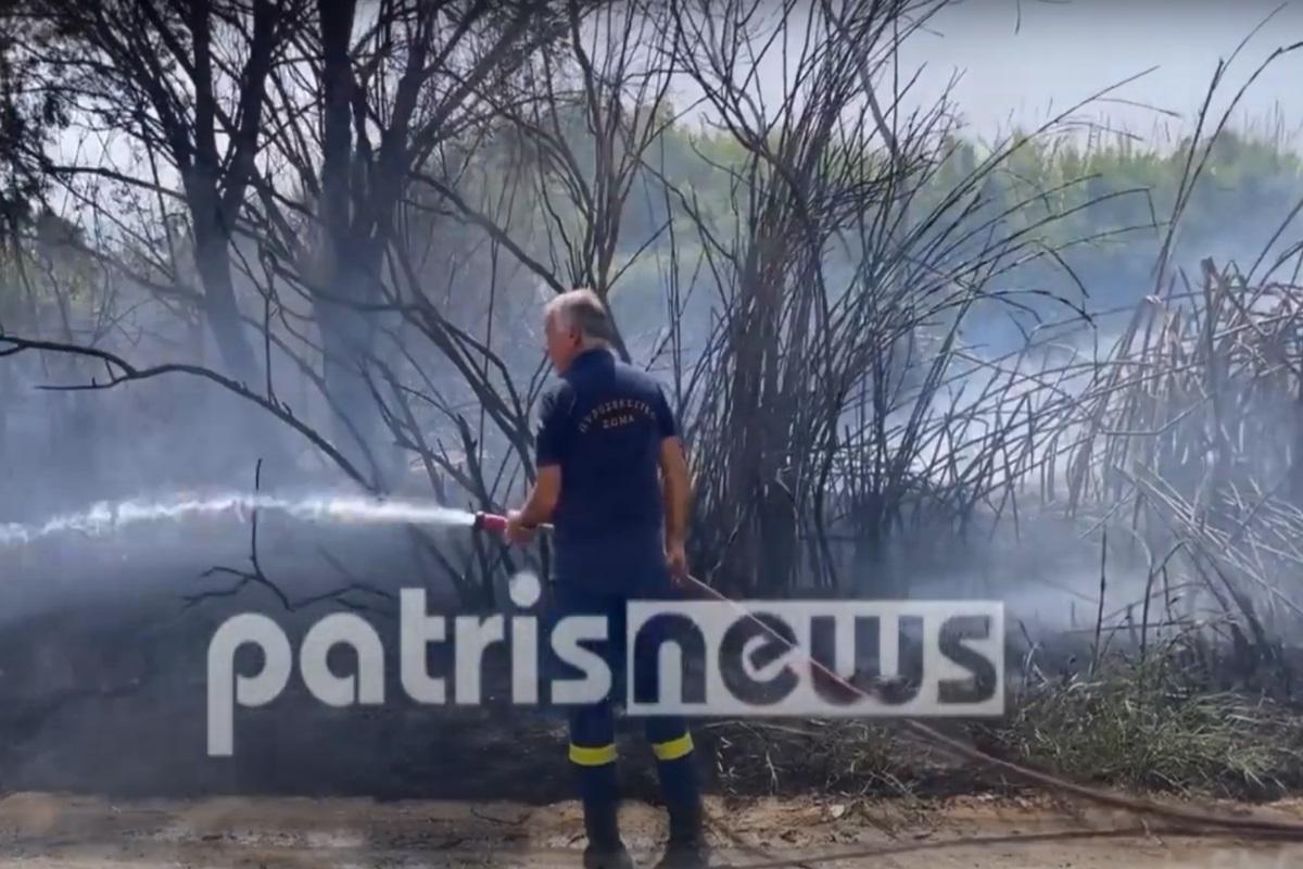 Φωτιά τώρα στην Ηλεία κοντά στη Μανωλάδα