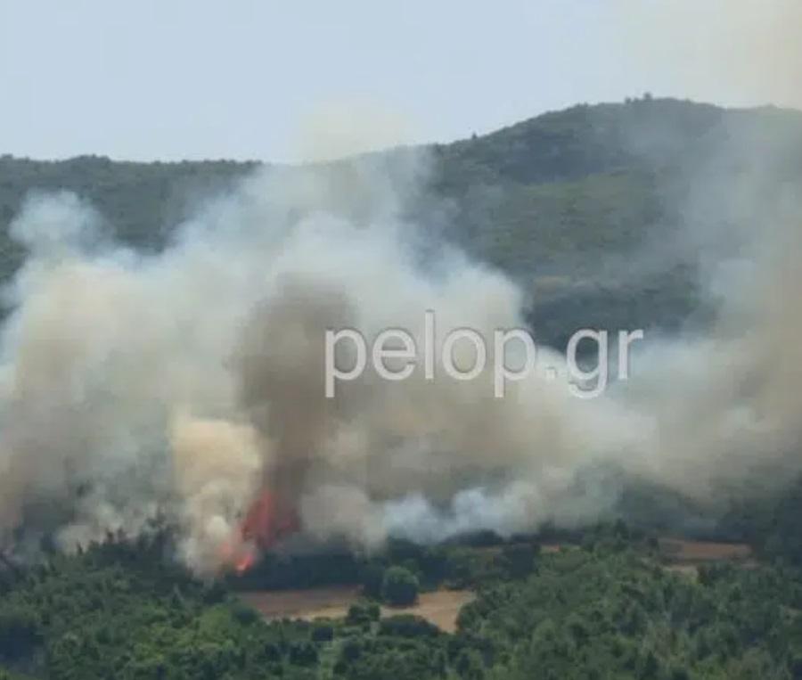 Φωτιά τώρα στην Πάτρα – Κοντά στο Καλέντζι