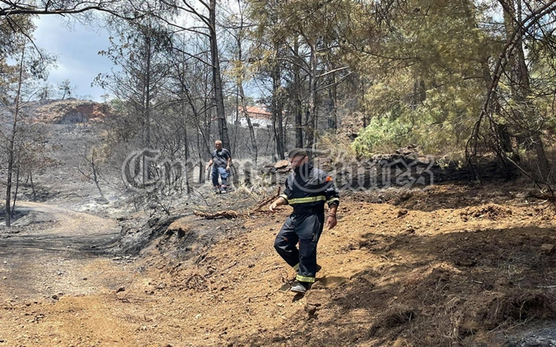 Κύπρος: Υπό πλήρη έλεγχο η φωτιά στο Πέρα Πεδί