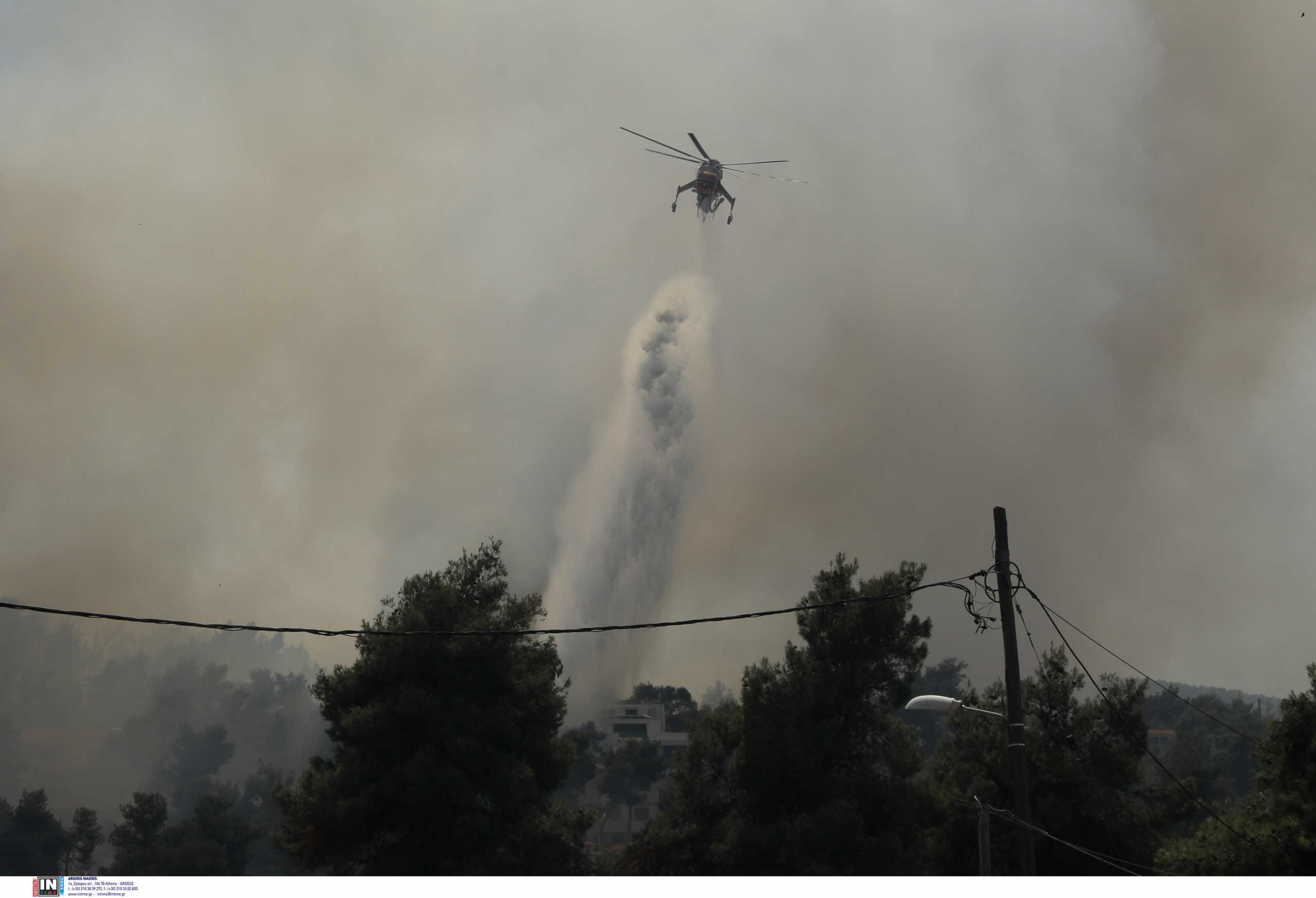 Φωτιά στην Σταμάτα: Νέο επείγον σήμα από το 112 – «Κλείστε καμινάδες, παράθυρα και πόρτες»