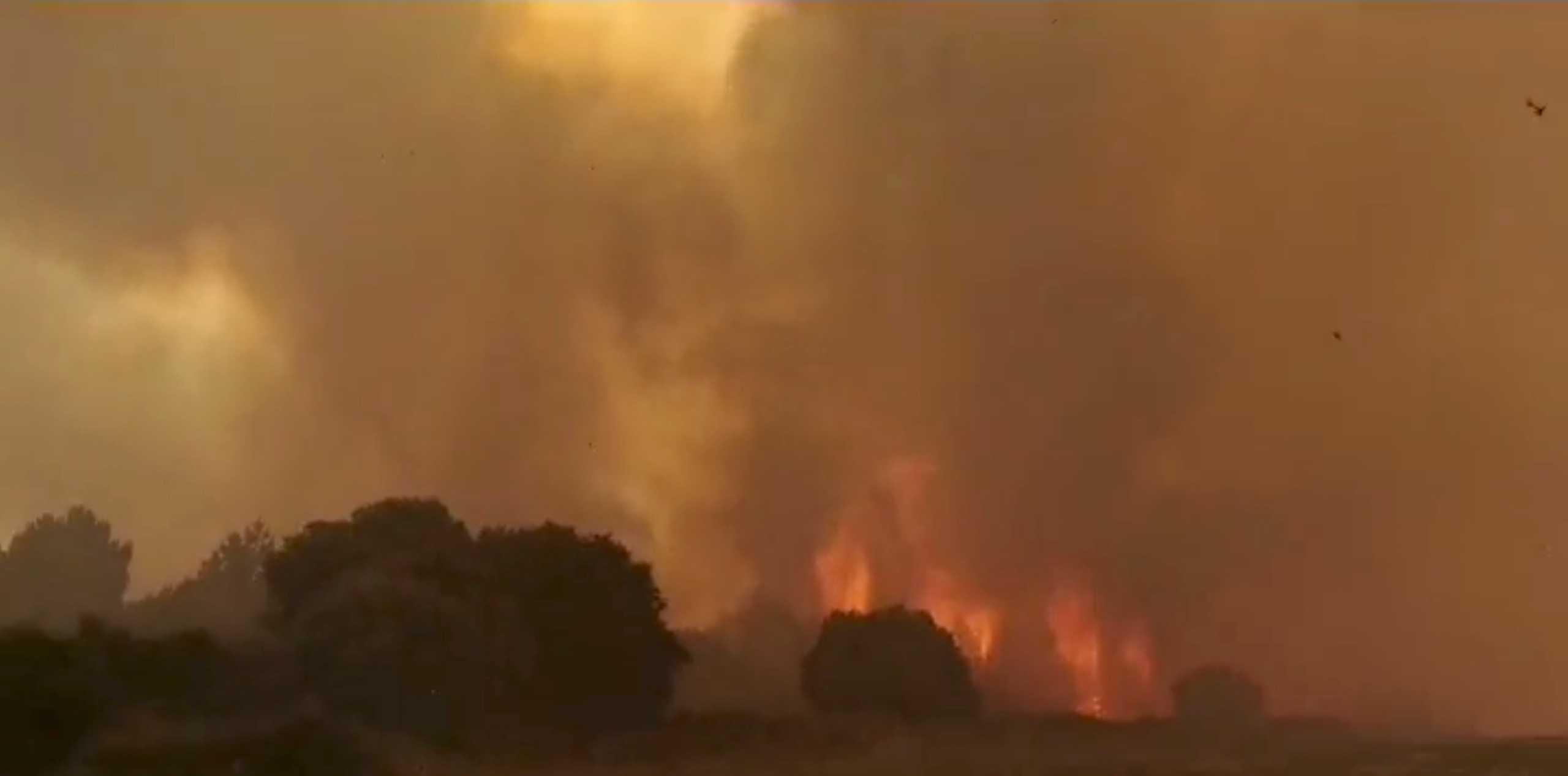 Φωτιές στην Ιταλία: 1.580.000 στρέμματα δασών έγιναν στάχτη