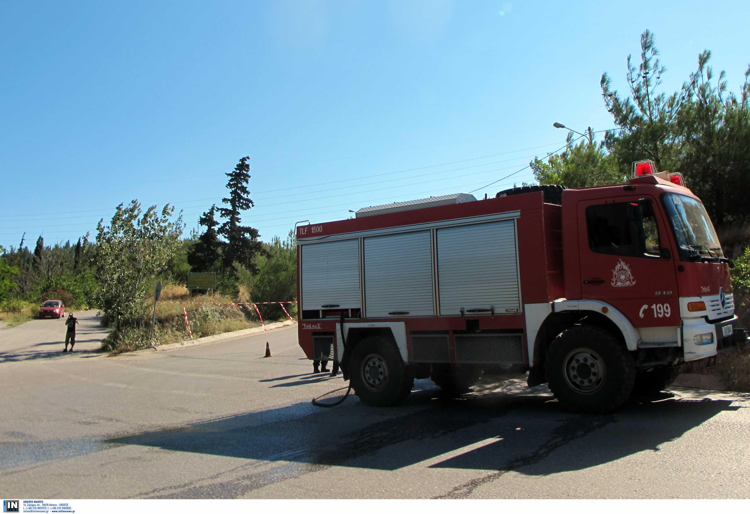 Έβρος: Απαγόρευση κυκλοφορίας αύριο σε δάση της περιοχής λόγω κινδύνου πυρκαγιάς