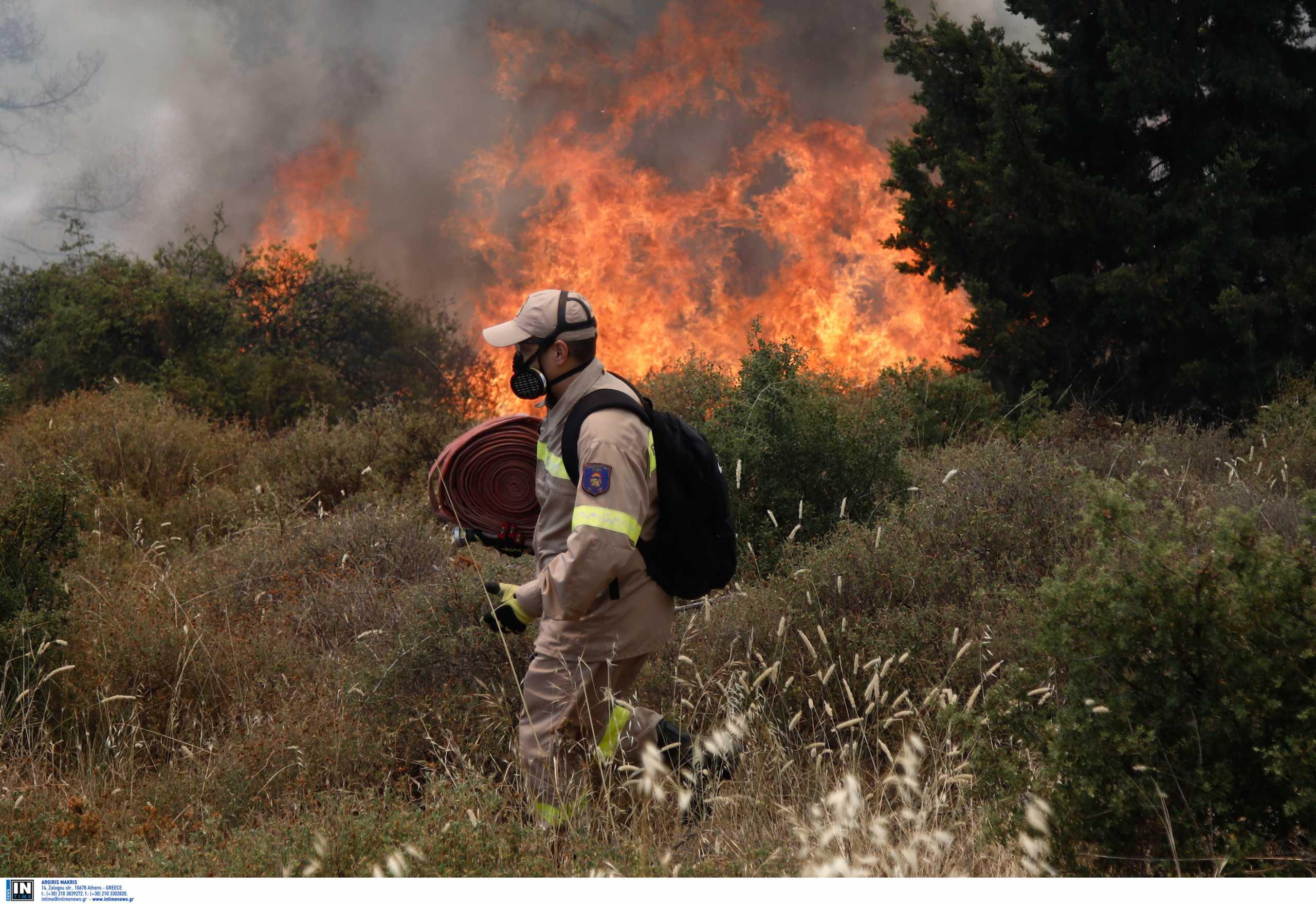 Πυροσβεστική: 42 πυρκαγιές σε ένα 24ωρο