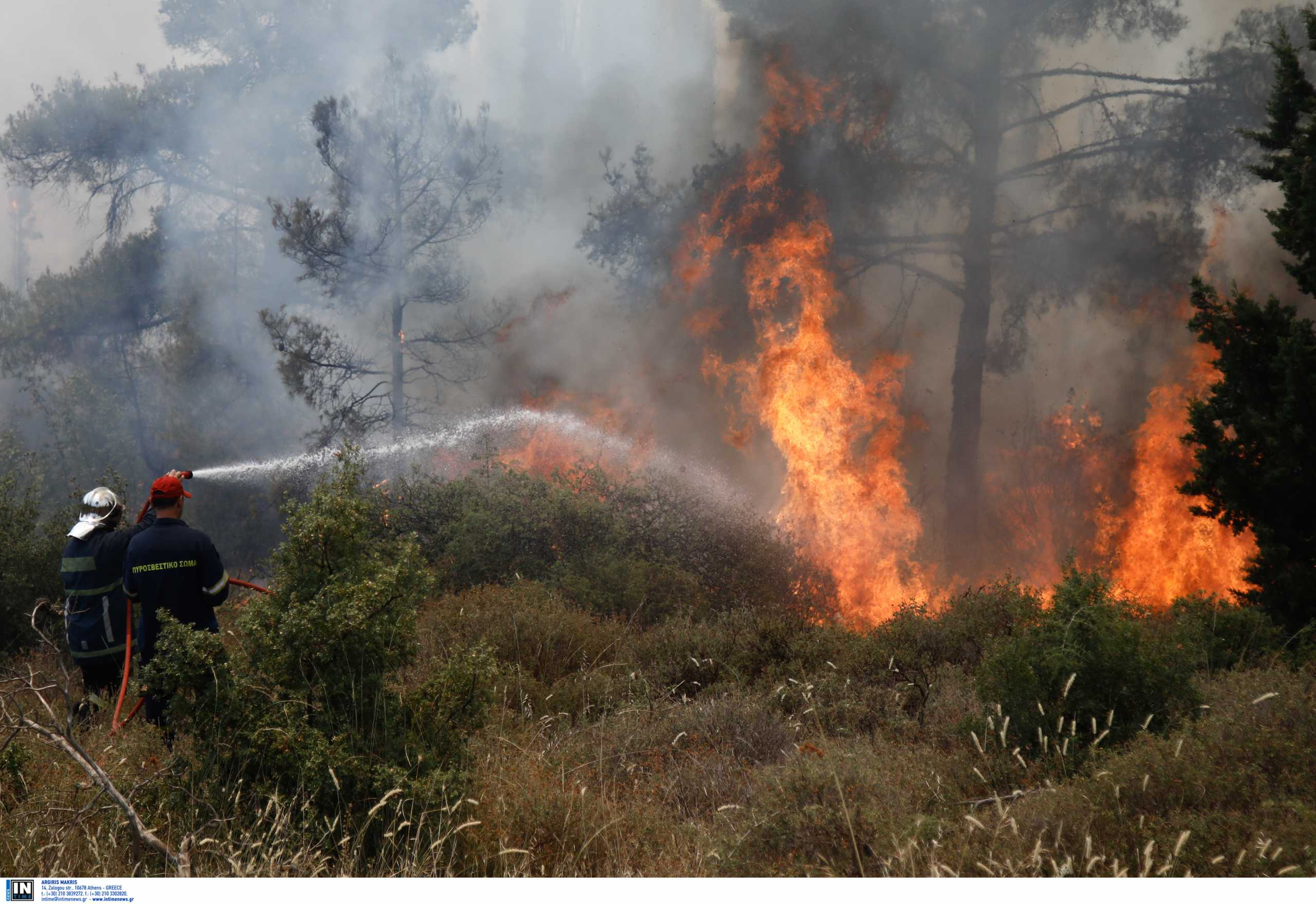 Φωτιά στην Ηλεία στην περιοχή Άγναντα