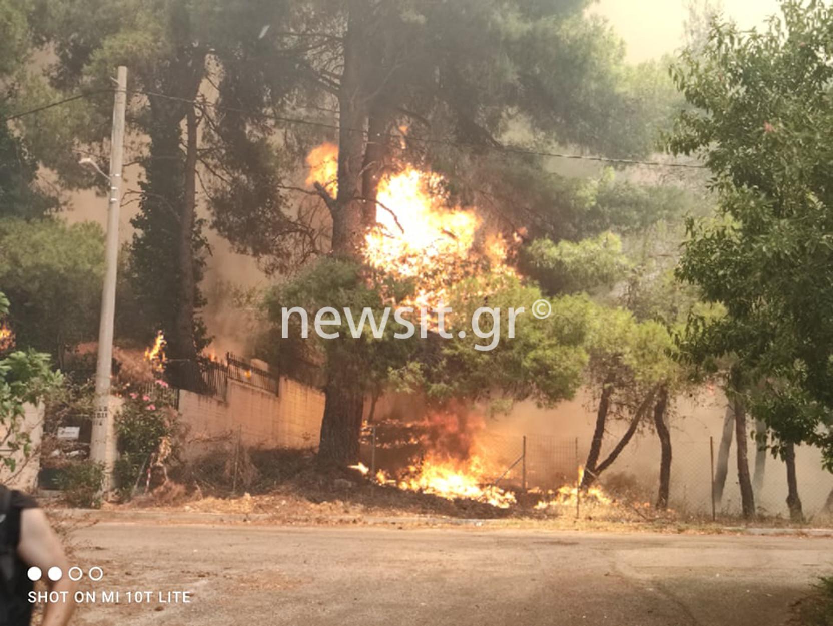 Φωτιά στη Σταμάτα – Ροδόπολη – Διόνυσο: Ελεύθεροι οι 4 προσαχθέντες