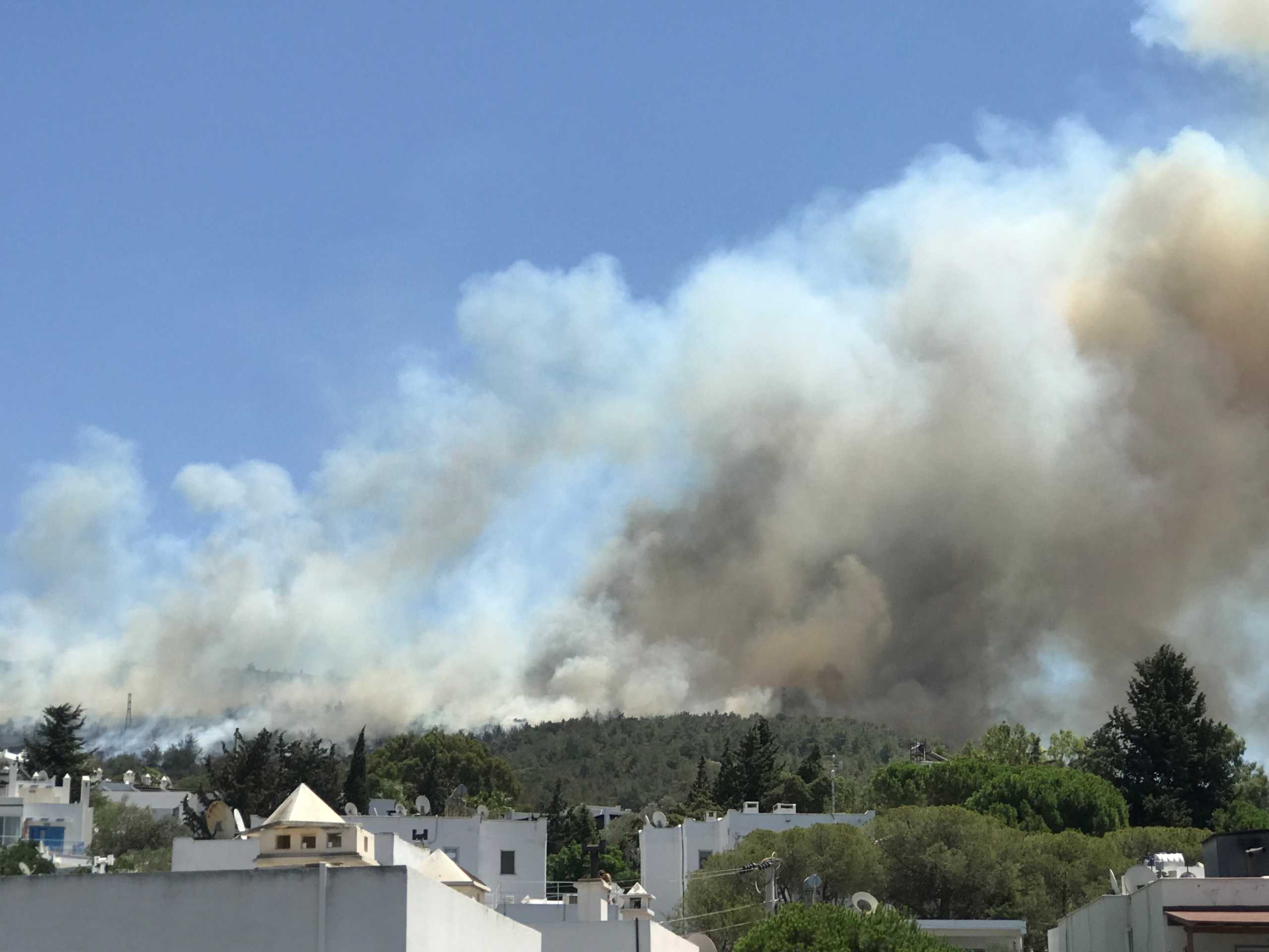 ΕΕ: Στέλνει πυροσβεστικά αεροσκάφη βοηθώντας την Τουρκία στην κατάσβεση των πυρκαγιών