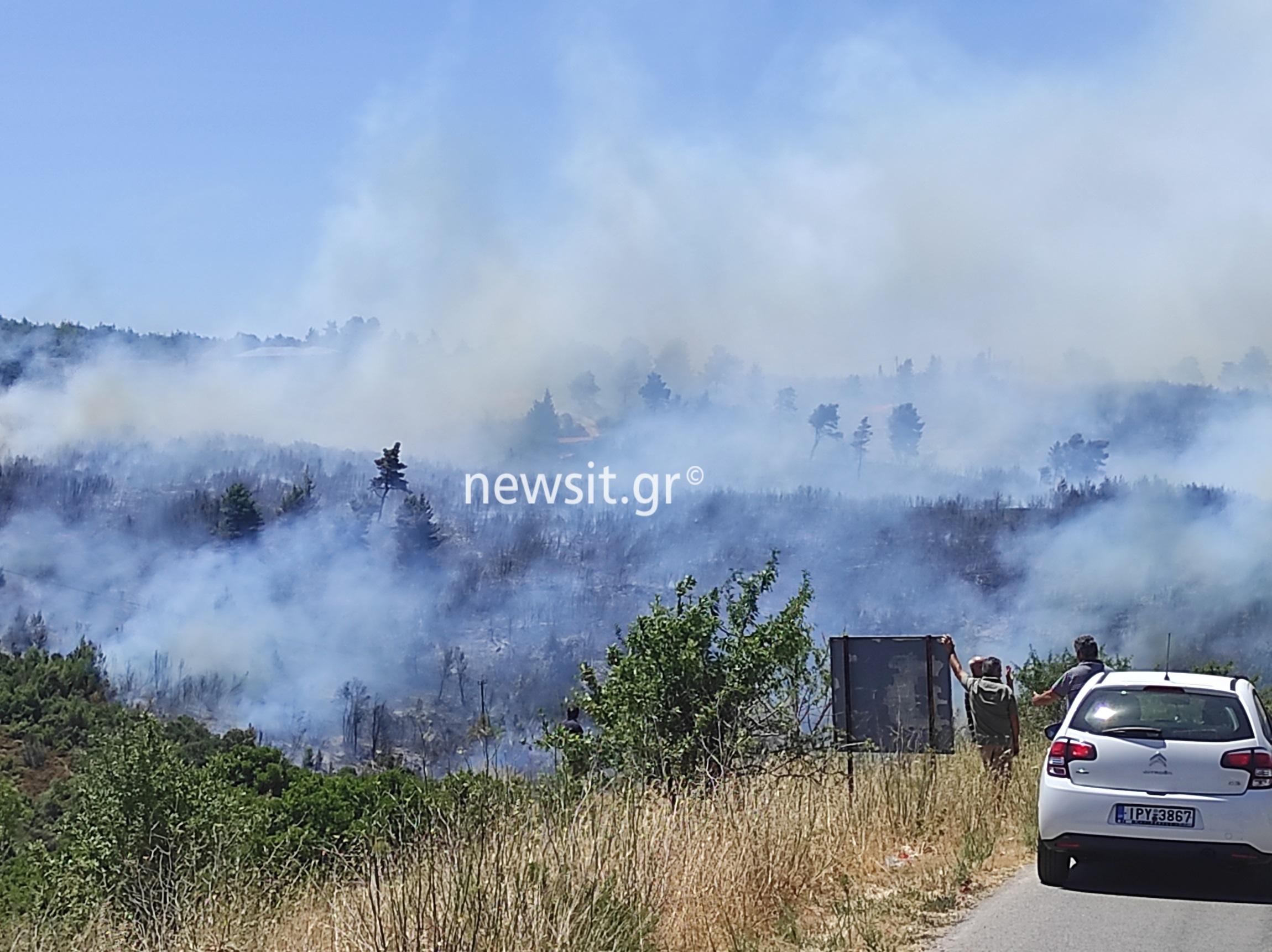 Φωτιά: «Φουντώνει» στον Βαρνάβα Αττικής – Μεγάλη μάχη της Πυροσβεστικής