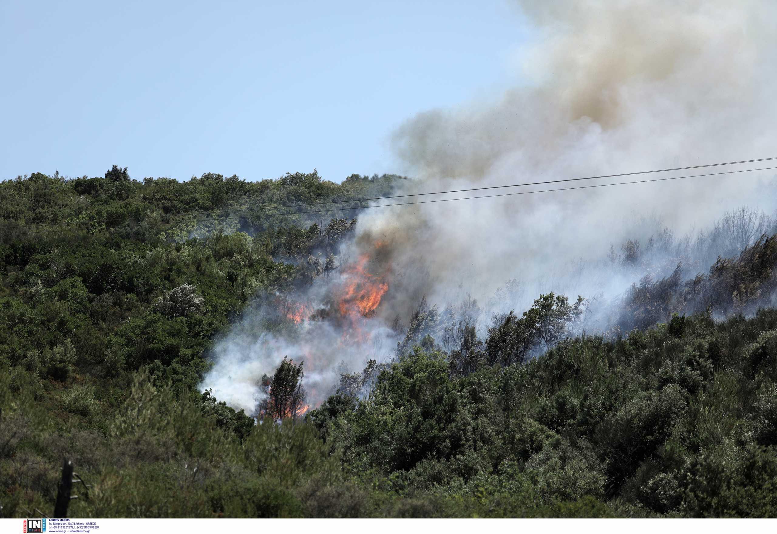 Φωτιά στην Ανατολική Μάνη – Εκκενώνεται ο οικισμός Λιβάδια