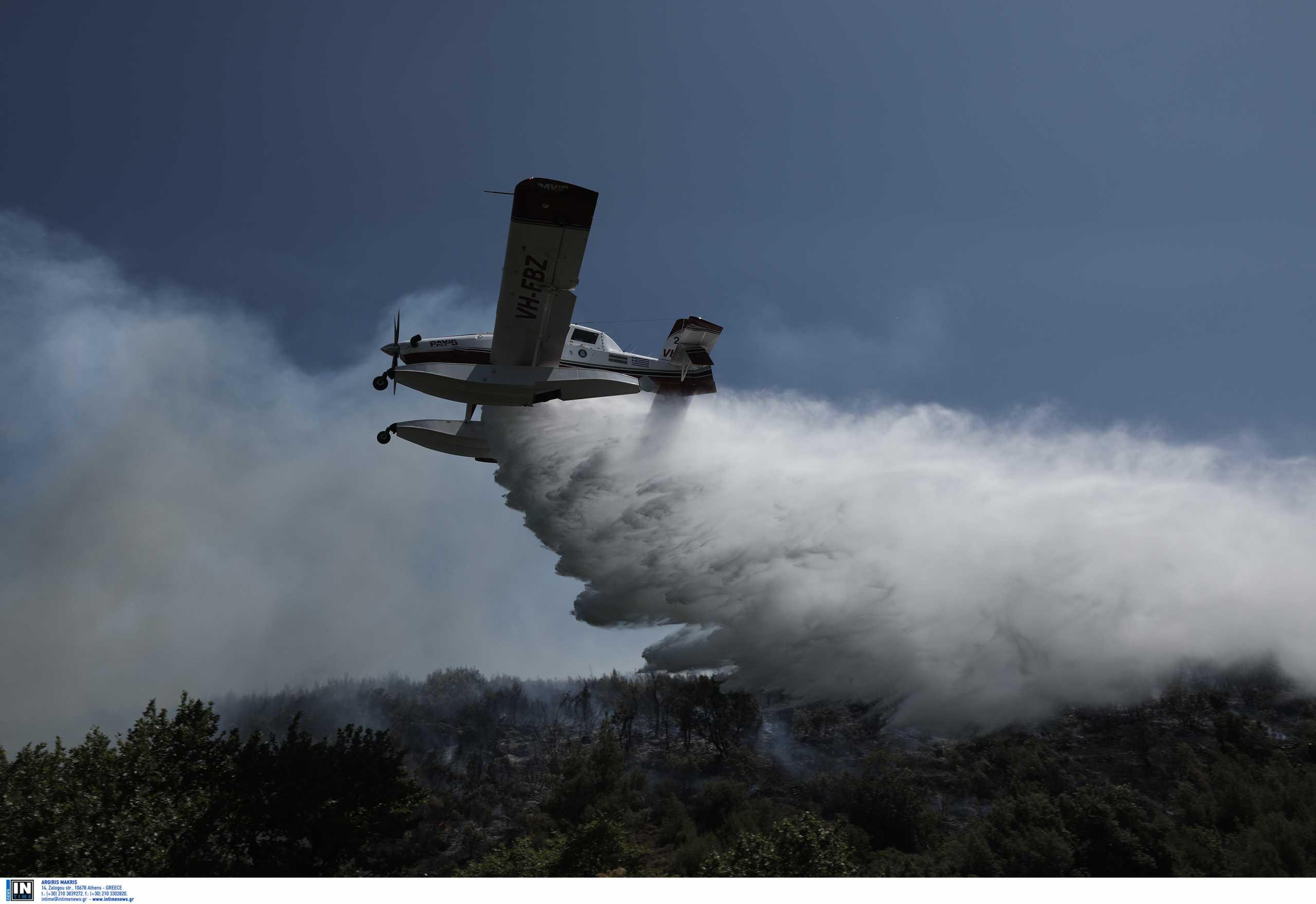 Φωτιά στη Μυτιλήνη: Καταστράφηκε αγροτικός συνεταιρισμός – Καταστράφηκε αποθήκη με ζωοτροφές