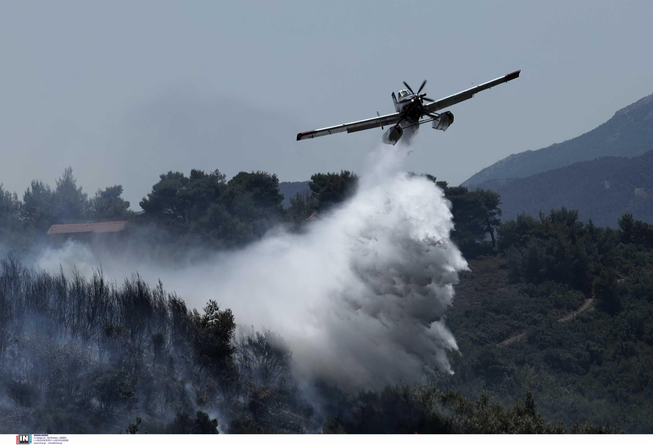 Φωτιά στον Βαρνάβα: Σκληρή μάχη με τις φλόγες – Εικόνες από τη μεγάλη καταστροφή