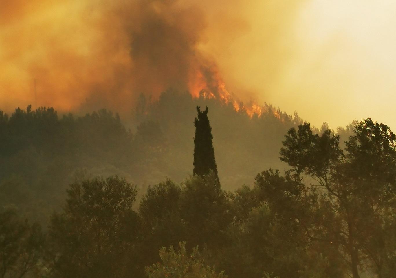 Φωτιά στη Σάμο: Ζητούν να κηρυχθεί το νησί σε κατάσταση έκτακτης ανάγκης