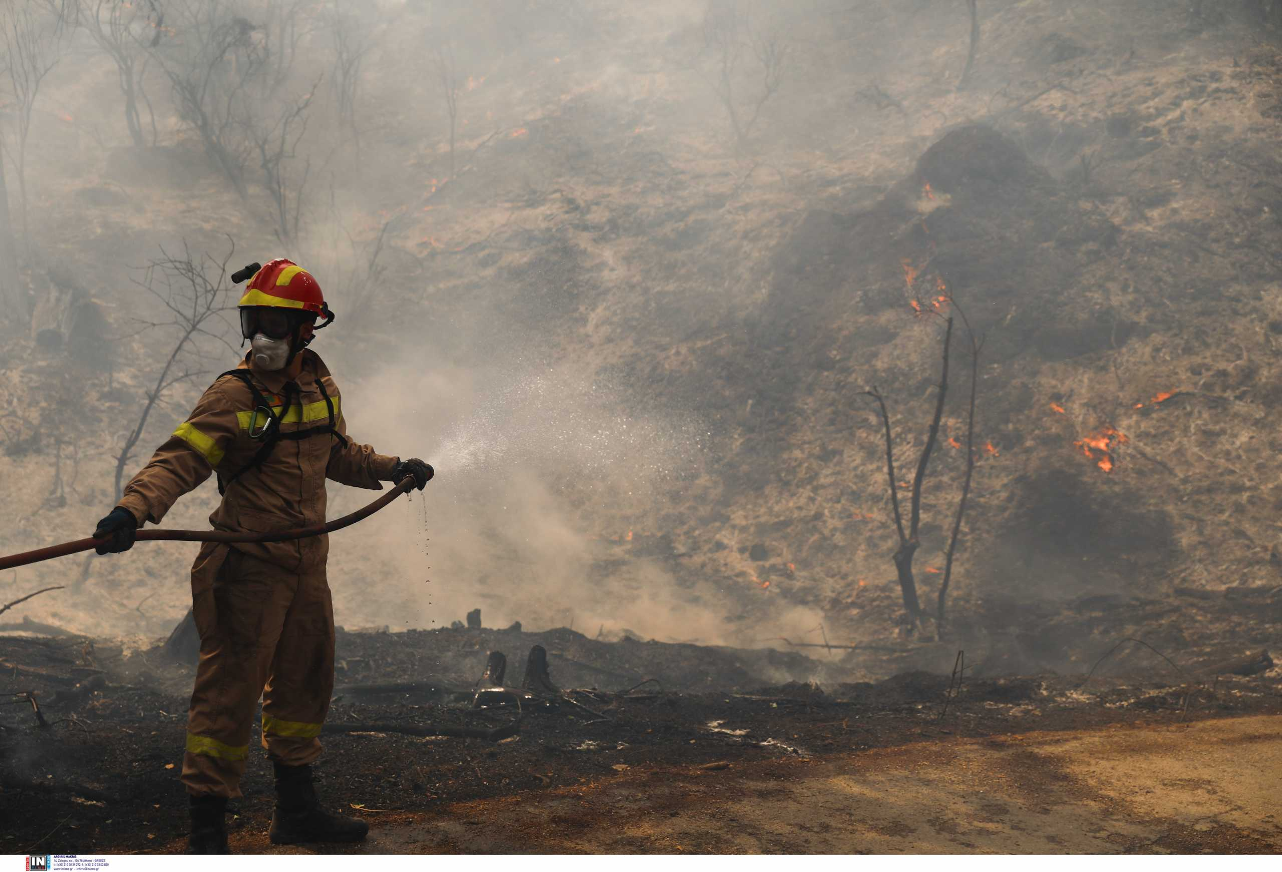 Φωτιά και στην Ελαία Φωκίδας – Ζητήθηκε εκκένωση του χωριού