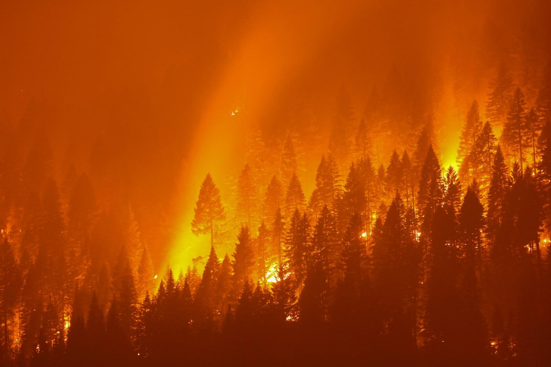 Κλιματική κρίση – Νίκος Δένδιας: Ανάρτηση για την παγκόσμια ημέρα ανθρωπιστικής δράσης