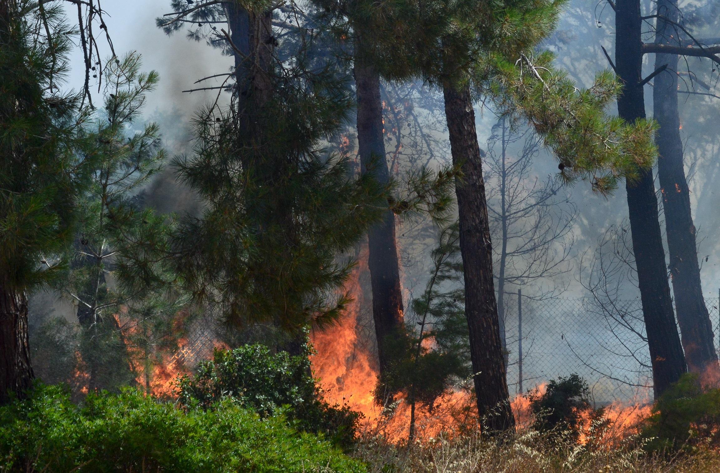 Μήνυμα του 112 για εκκένωση περιοχών στη Μεσσηνία