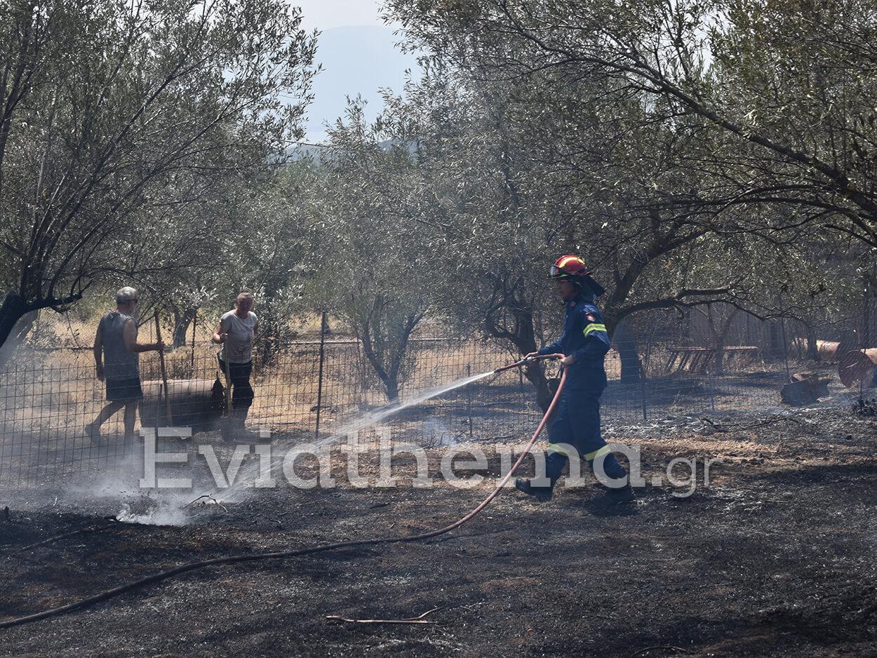 Φωτιά δίπλα σε δάσος στην Εύβοια σήμανε συναγερμό στην Πυροσβεστική
