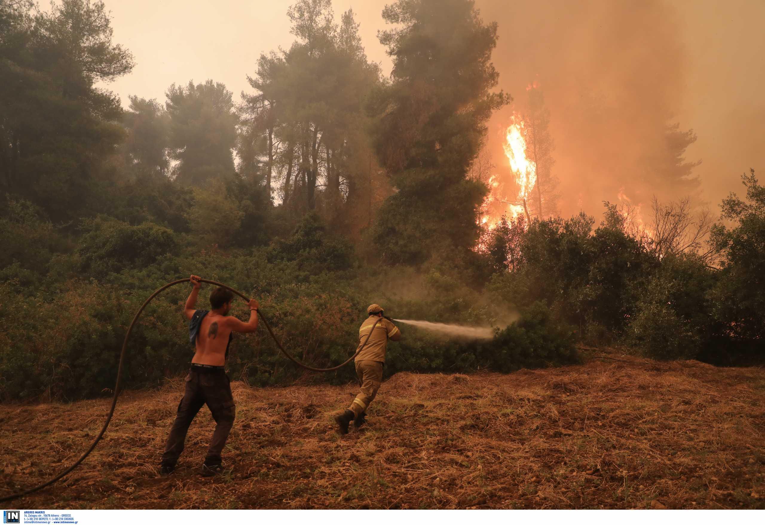 Φωτιές: Εισαγγελική παρέμβαση καθώς υπάρχουν υπόνοιες για οργανωμένο σχέδιο εμπρησμού
