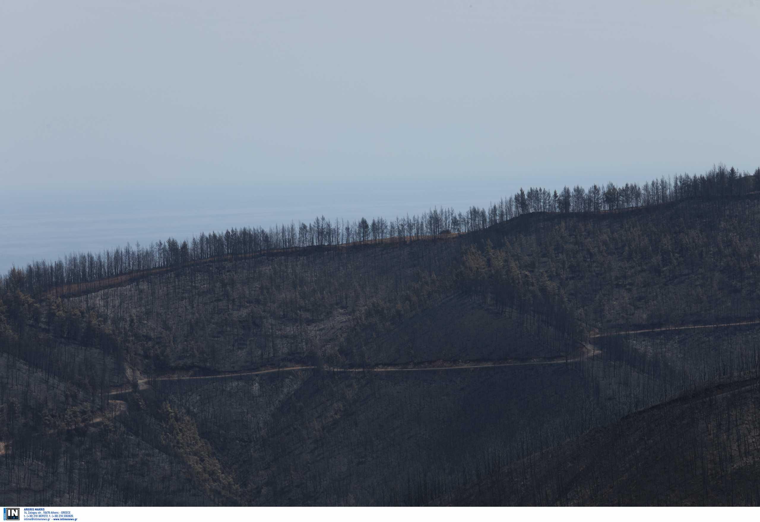 Αποζημίωση ύψους 2.31 εκατ. ευρώ για 533 δικαιούχους που επλήγησαν από τις καταστροφικές πυρκαγιές