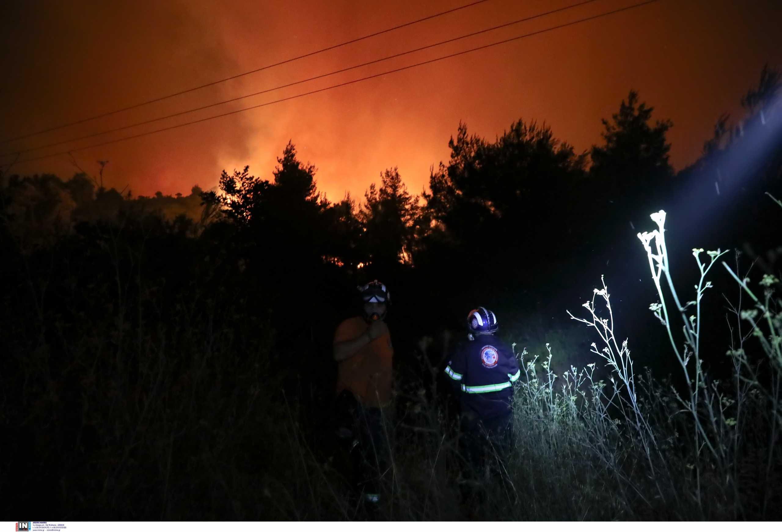 Φωτιά στην Μάνη: Μαίνεται το πύρινο μέτωπο – Μάχη για να μην μπει στο Γύθειο