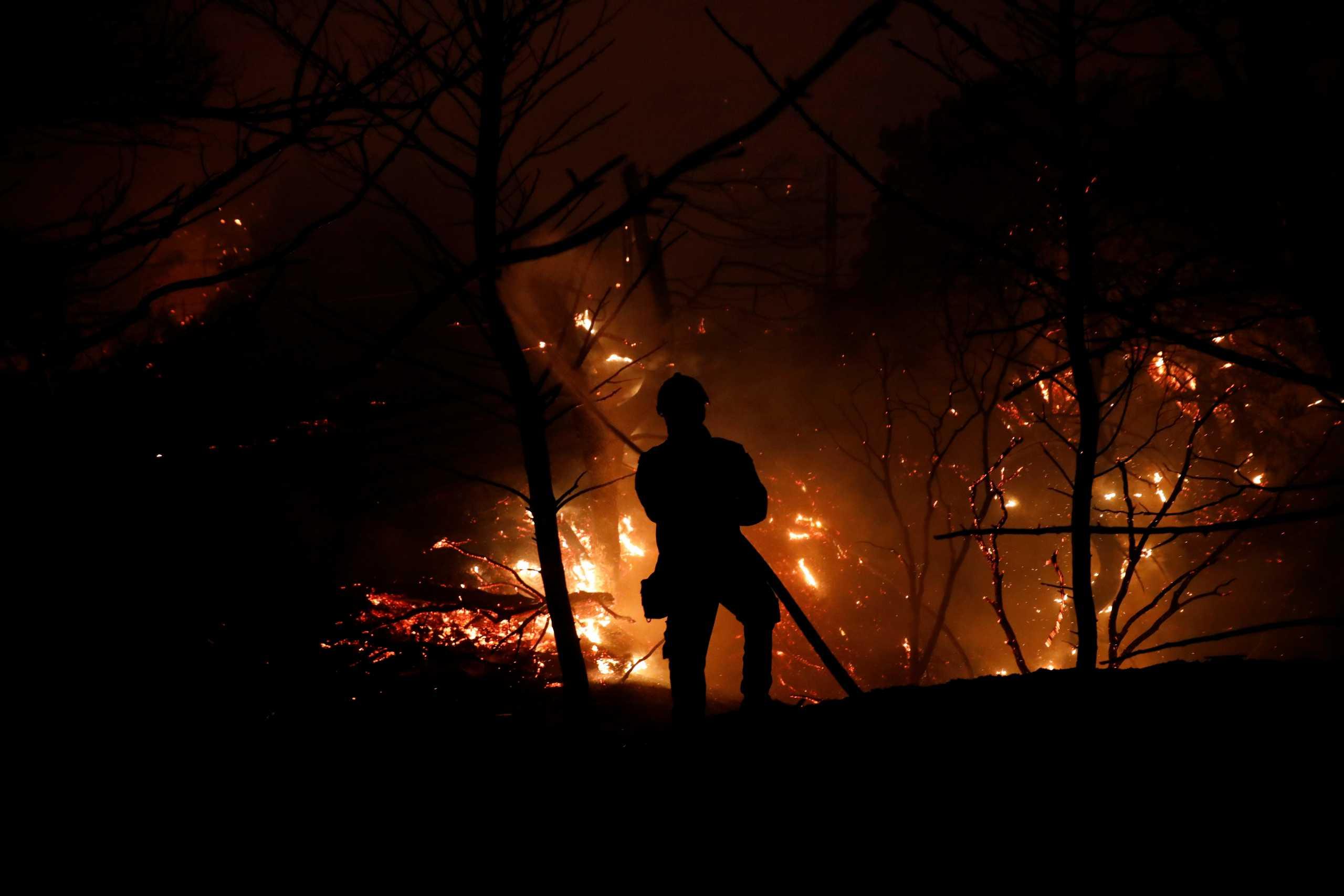 Φωτιές στην Ηλεία: «Οργανωμένο σχέδιο εμπρησμού χωρίς καμία αμφιβολία»