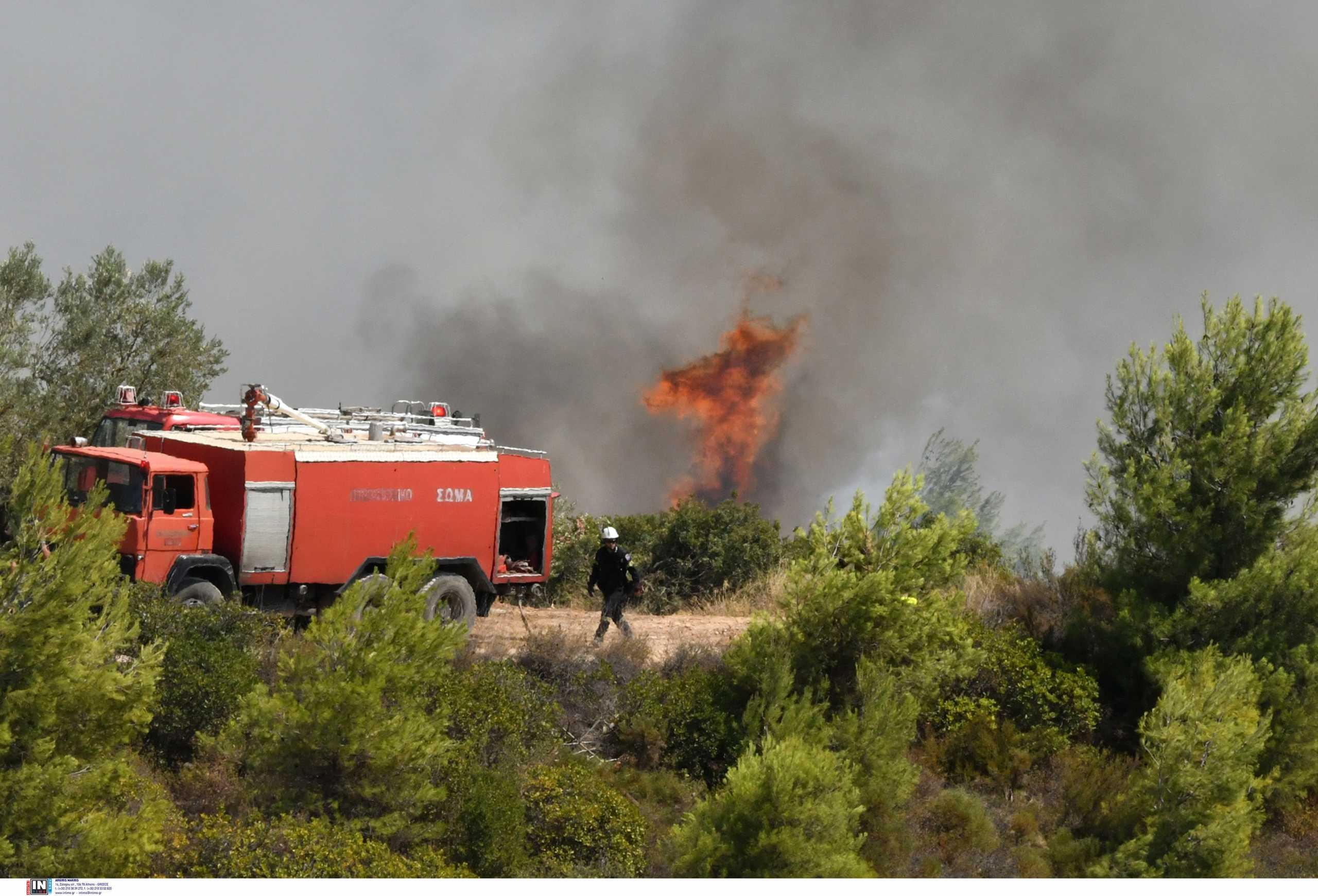Ανεξέλεγκτη η φωτιά στην Κω – Εντολή να φύγουν οι κάτοικοι από την περιοχή Τσουκαλαριά