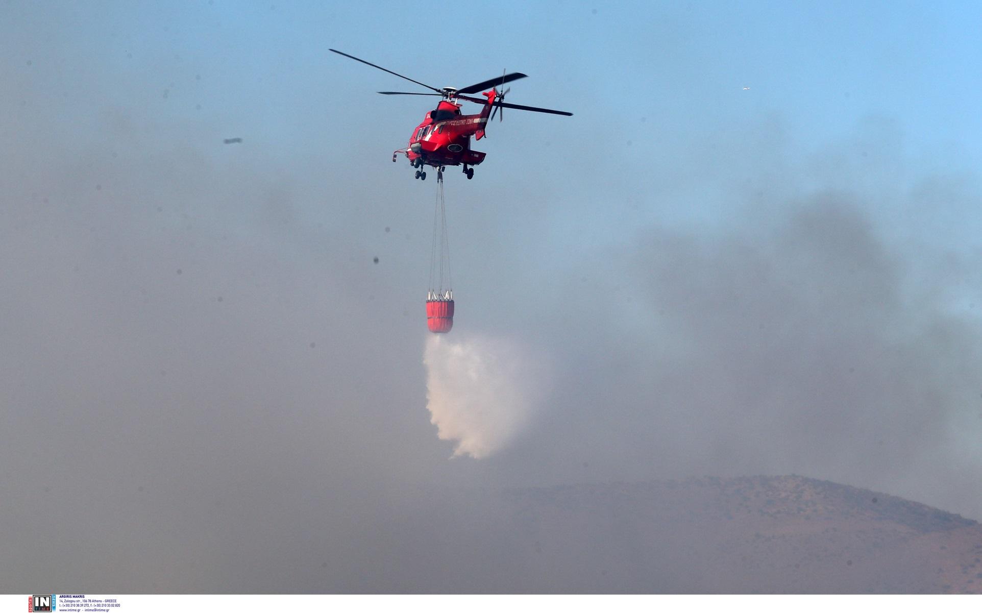 Φωτιά στη Λαυρεωτική: Έχει οριοθετηθεί η πυρκαγιά – Οι πυροσβέστες περιβρέχουν την περίμετρο