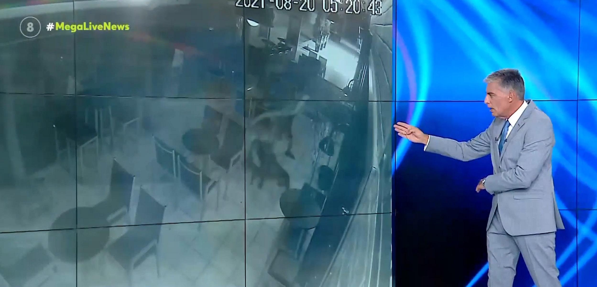 Θεσσαλονίκη: Βίντεο ντοκουμέντο αποκαλύπτει τον μαρτυρικό θάνατο του αδέσποτου σκύλου