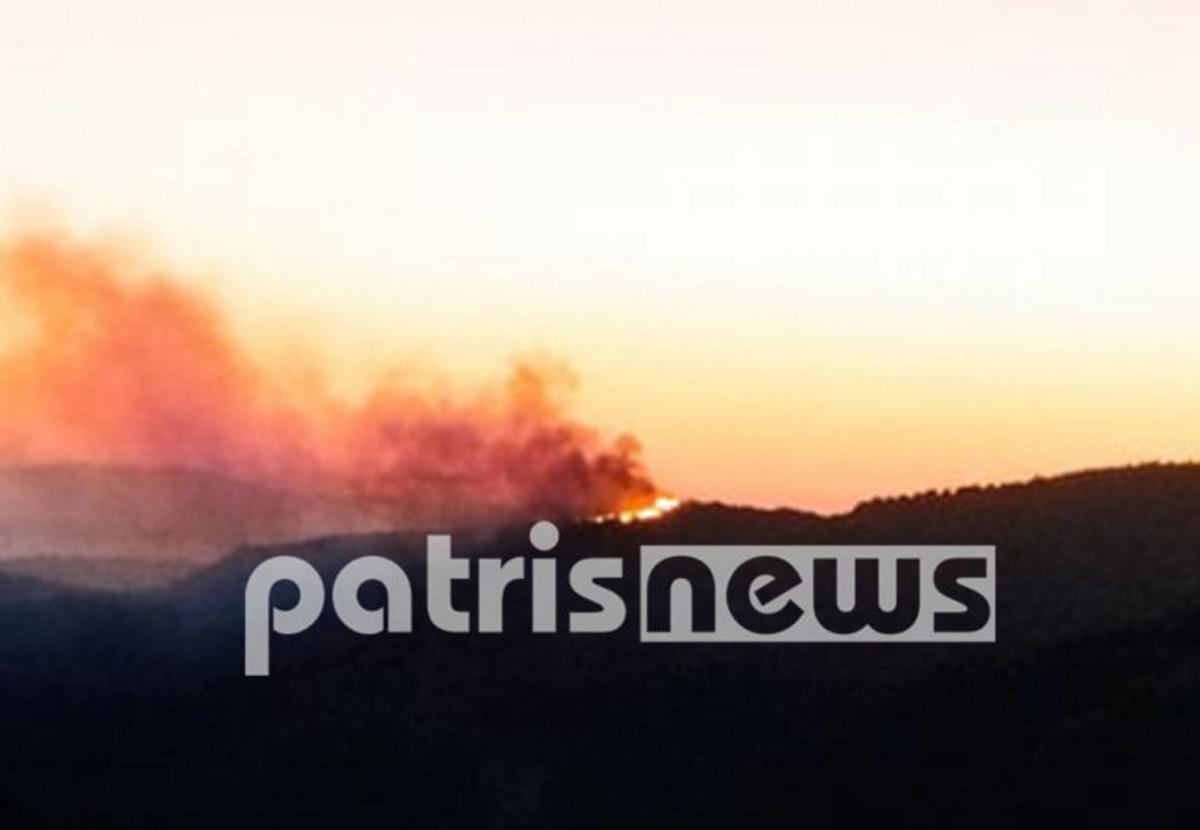 Ηλεία: Φωτιά στην Κορυφή από την πλευρά της Αμαλιάδας
