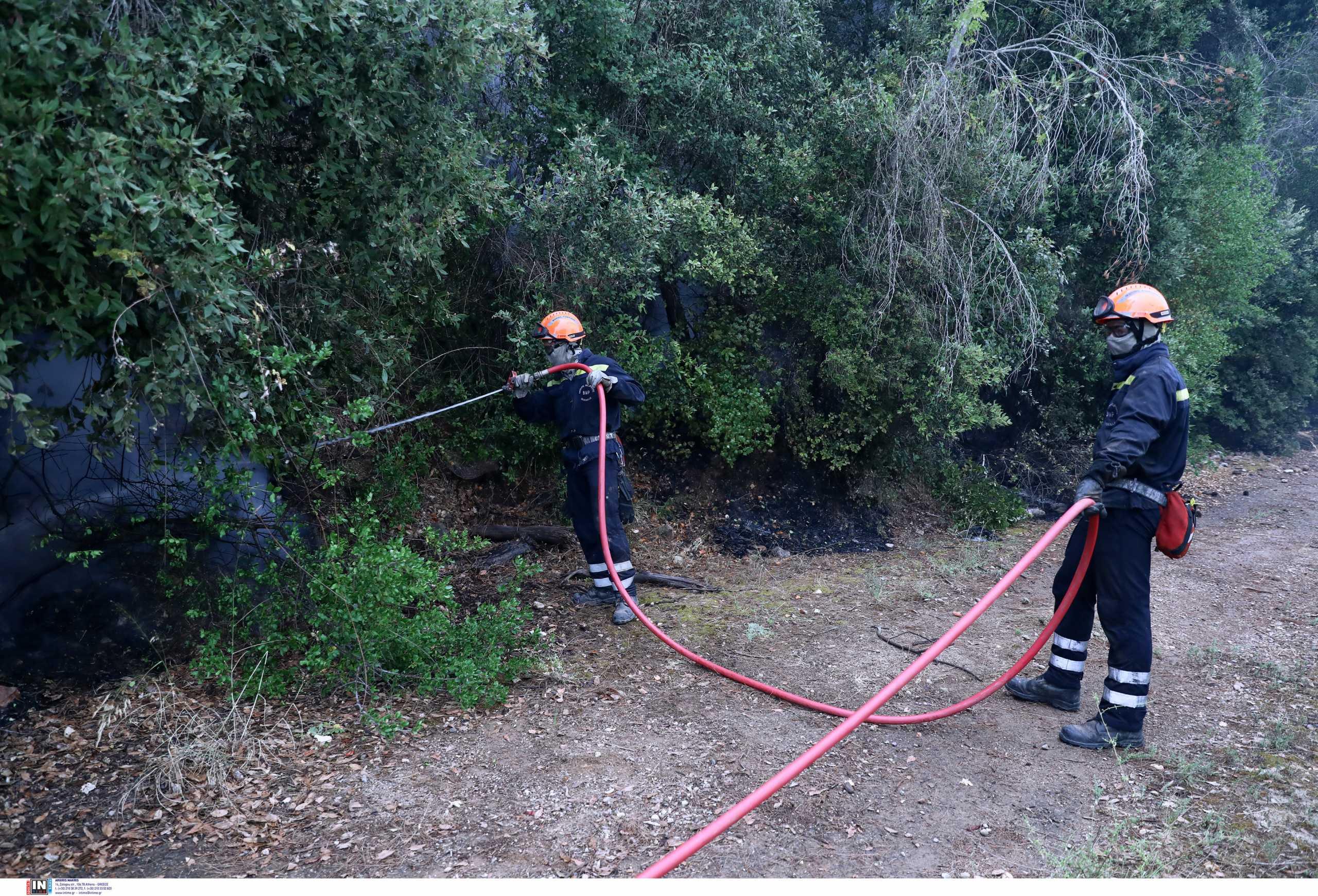 Αναζωπυρώσεις στις περιοχές Σκαμνάκι, Δεσφίνα και Καρέα της Ανατολικής Μάνης – Τις έσβησαν οι πυροσβέστες